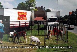 Cirque TIC-TAC