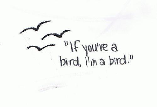 Si tu es un oiseau, je suis un oiseau.