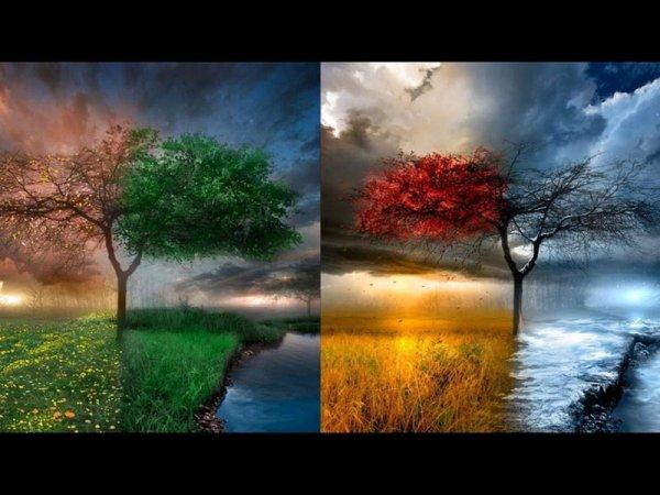 Au fil des saisons