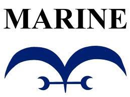 les énemis du chapeau de paille:la Marine
