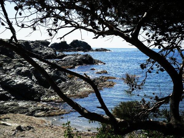 île du Gaou