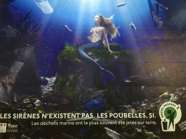 Les sirènes n'existent pas, mais les déchets plastiques oui....  Les dangers de la pollution maritime avec les plastiques. Prince Thierry Singer de Polignac
