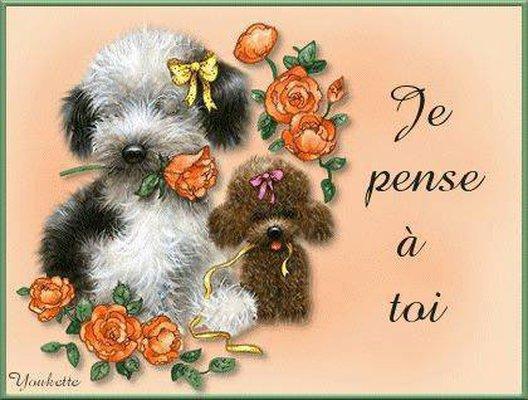 Bonjour je vous souhaite un magnifique week-end bisous ( je reviens dimanche à bientôt )