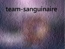 Photo de Teams-Sanguinaire