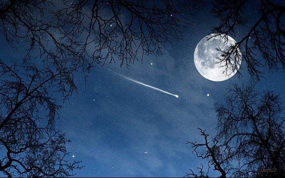 «C'est marrant, il y a des étoiles autour de toi. Et comme tu es mon soleil, j'ai l'impression d'être dans le ciel...» Nicolas