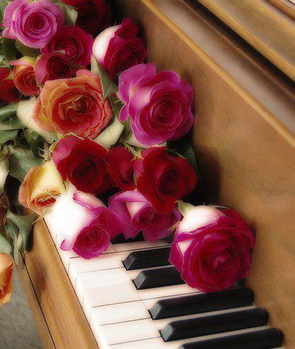 je vous envois plein de bonne ondes accompagné d'un joli ptit bouquet de roses pour mes amis et amies bizzousssss