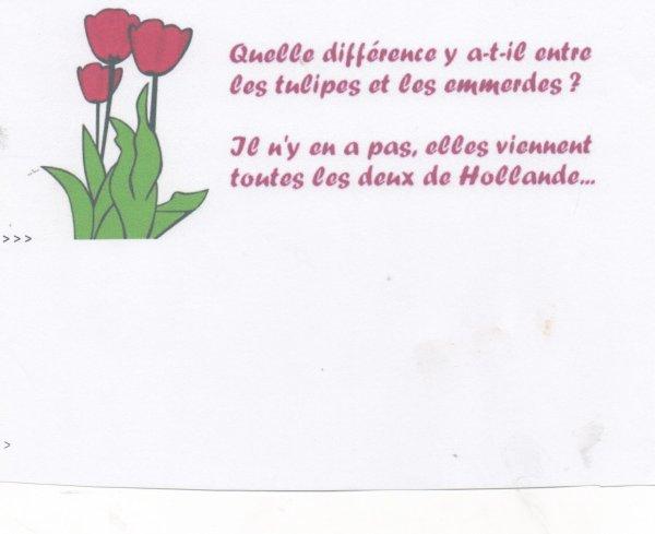 UN PEU D'HUMOUR DANS NOTRE TRISTE MONDE ! UNE GENTILLE DEVINETTE !!!!!