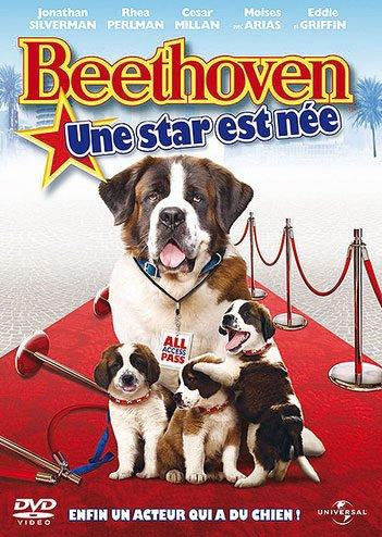 Beethoven 6 : Une star est née