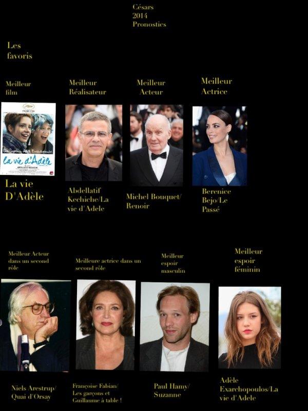 Césars 2014 : pronostics numéro 1