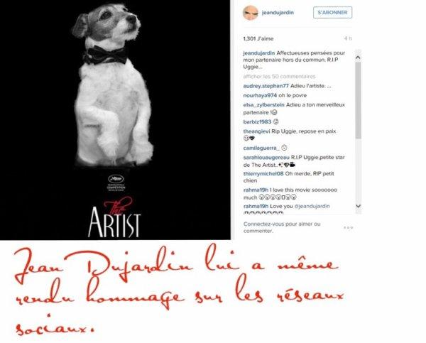 Mort d'Uggie, le petit chien de «The Artist»