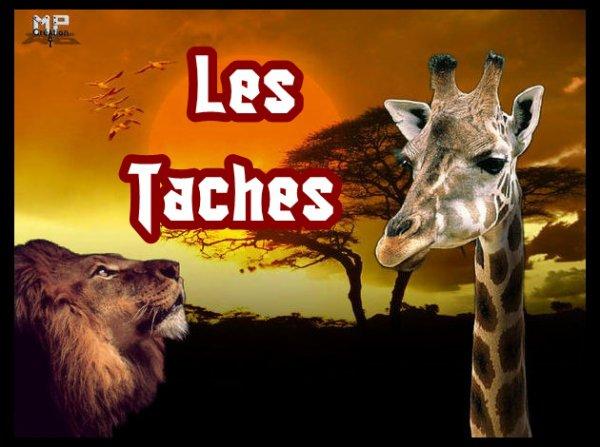 Les Taches