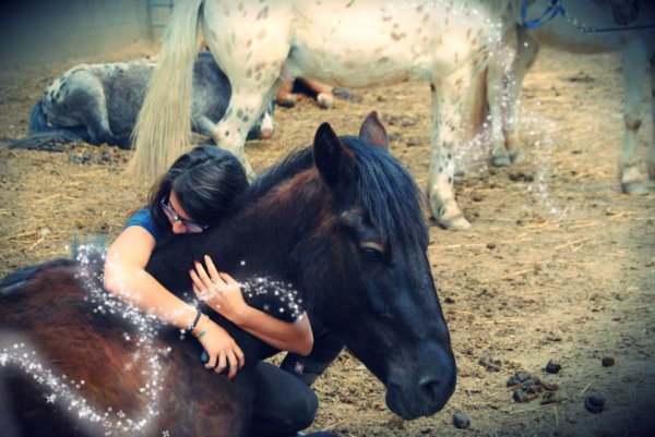 Un poney, se poney, mon poney.