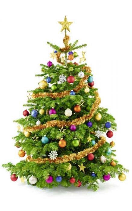 Déjà presque Noël...
