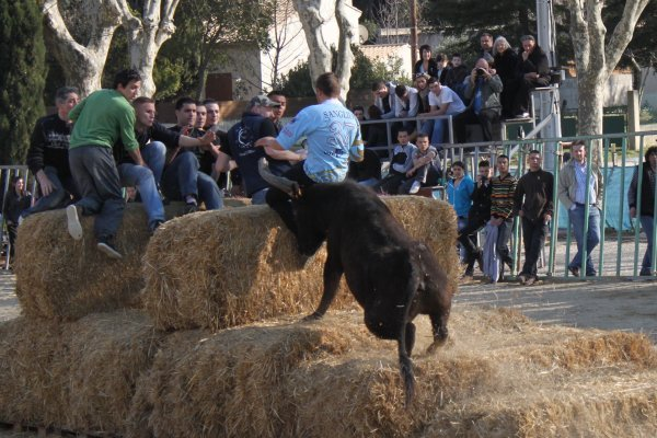 ENCIERRO AIGUES-VIVES 05.03.2011