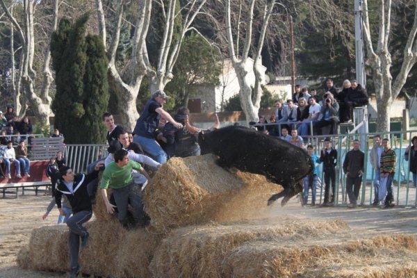 AIGUEVIVES ENCIERRO  05.03.2011