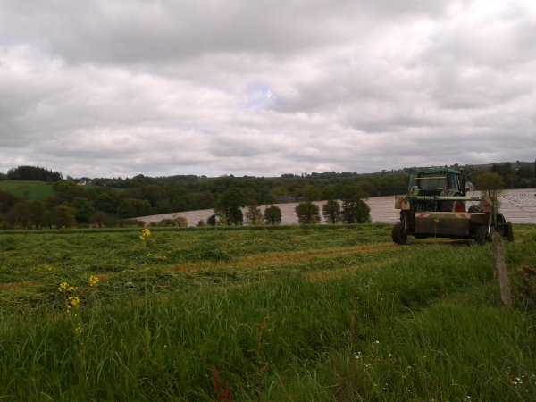 fauchage d'herbe 2012