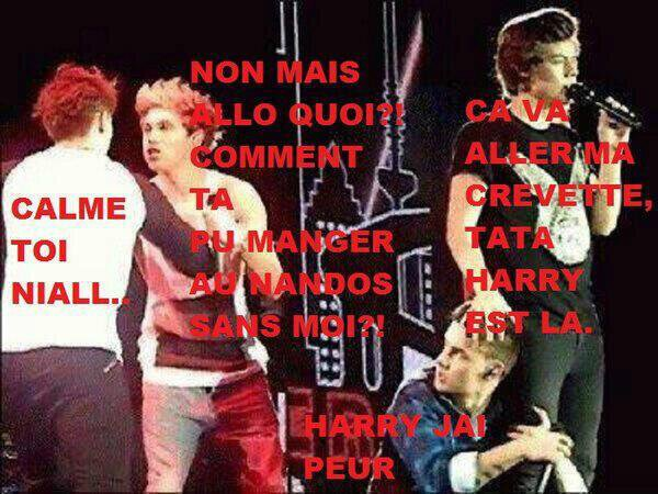 "One Direction Parody ""Non Mais Allô Quoi !"""