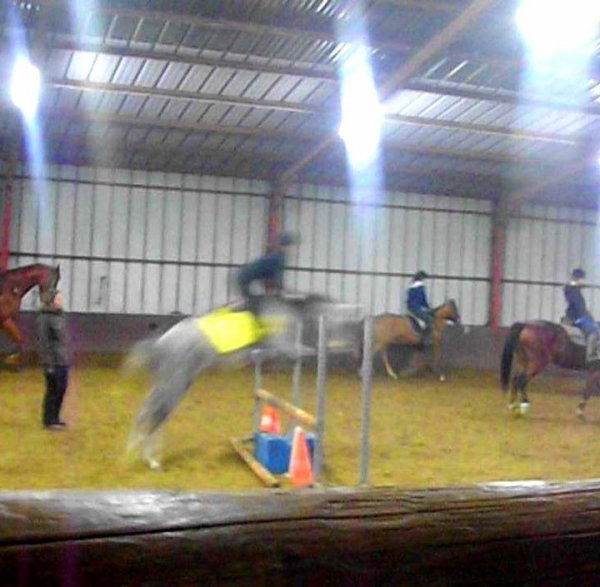 Equitation ... ♥