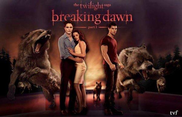Sortie en Salle de Breaking Dawn (Part1)