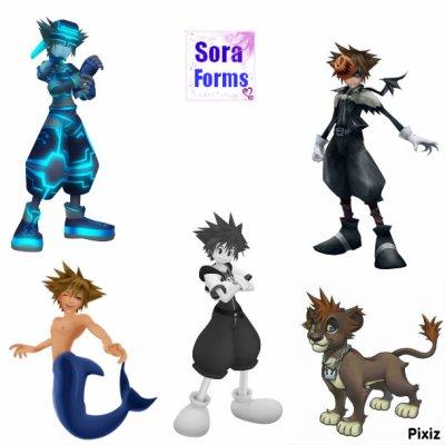 Les Formes De Sora (Autres)