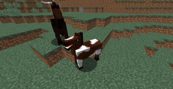 Les différents animaux minecraft