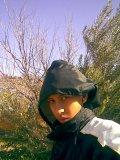 Photo de mitchou48