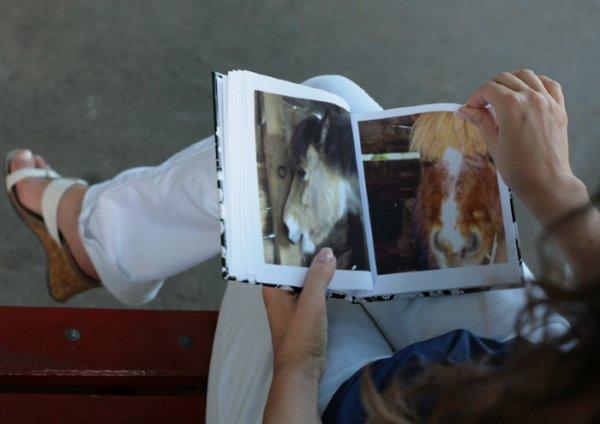mercure et bob dans un album photos !!! 8-p