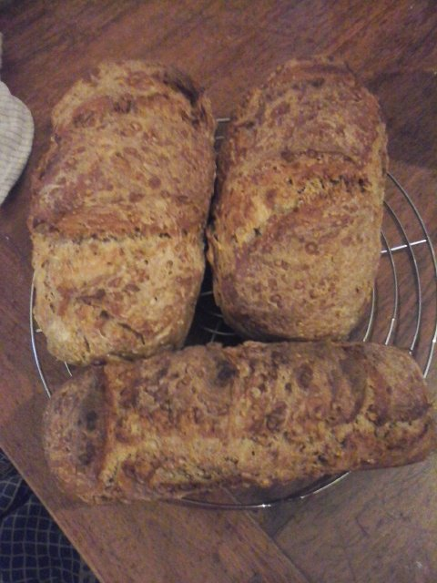 pain a la farine de tournesol