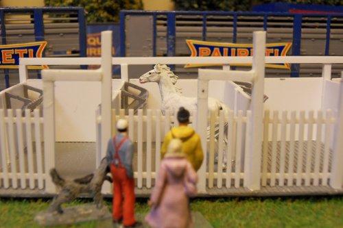 Les boxes des chevaux 09