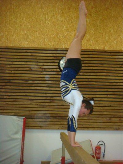 .Une Gymnaste est Sans Cesse à la Recherche de la Perfection.