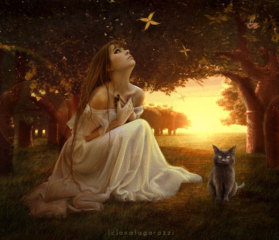 je rêve,je lance des mots vers le jour qui s'achève.