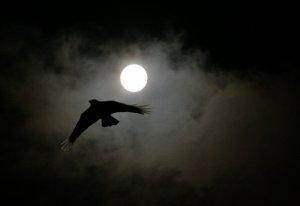 CHAPITRE 16 : quand la nuit te rend t'es souvenir pour le meilleur et pour le PIRE