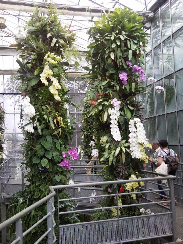 29/07/2012 visite en famille a terra botanica