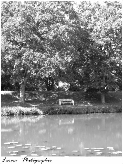 Photographie N°8 _ Paysages