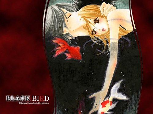 ✿ Black Bird