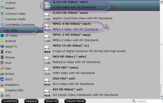 Nicely Upload Sony Handycam MTS Files to YouTube and Vimeo