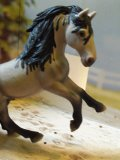 Photo de Schleich-x1003