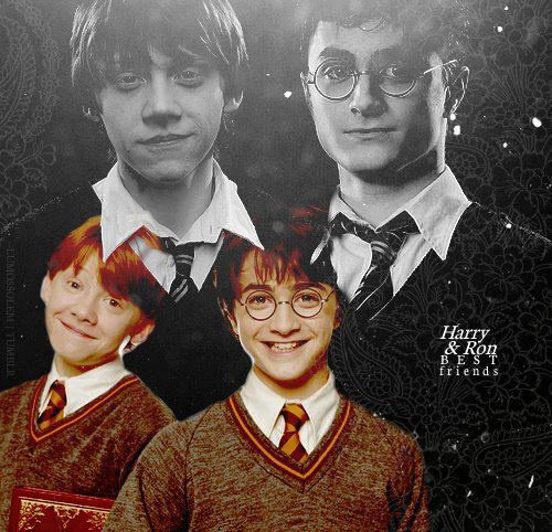 Harry et Ron <3