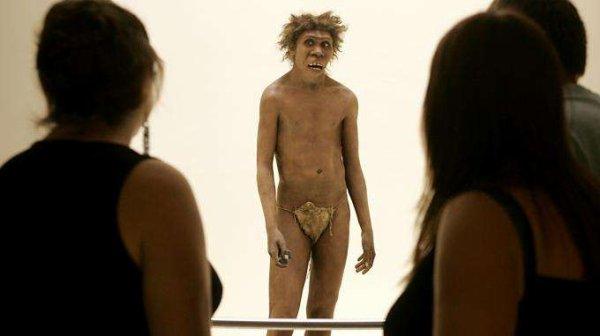 Un crâne vieux de 400 000 ans pourrait permettre d'élucider le mystère des origines de l'homme de Néandertal