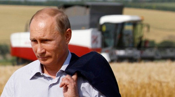 Russia looks to become leading organic food exporter as Europe sees future in GMO