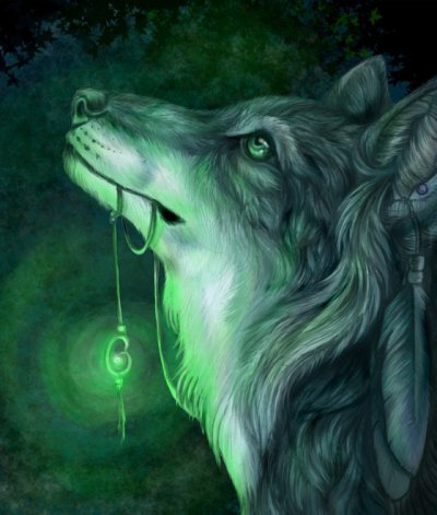 transformation d' Heaven en loup - garou