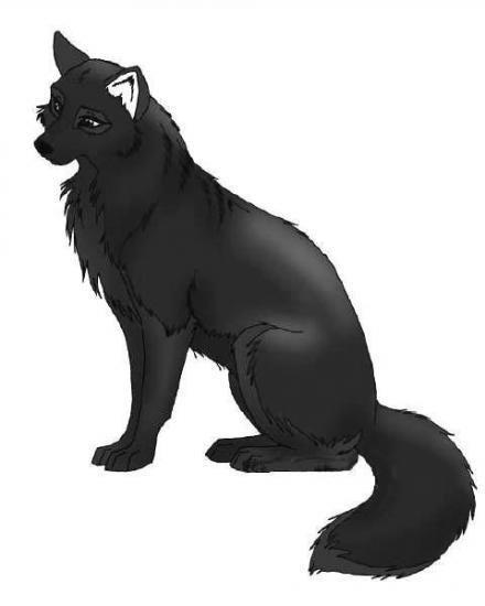 transformation de Kameron en loup - garou