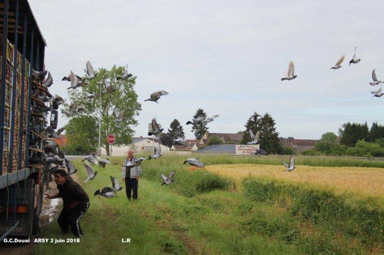 Lacher d arsy le 2 juin Gprt Douai