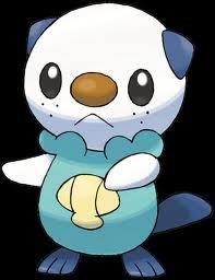 Pokémon - Saison 14 / Episode 31 : Le coupillage perdu de Moustillon !