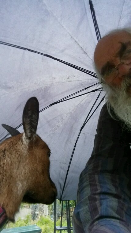 La c'était un temps à ne pas mettre une biquette dehors. Mon maître a pris son parapluie