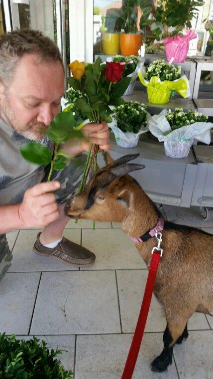 C'était  à L'île aux fleurs il me donne des roses à manger. mais oui j'adore.