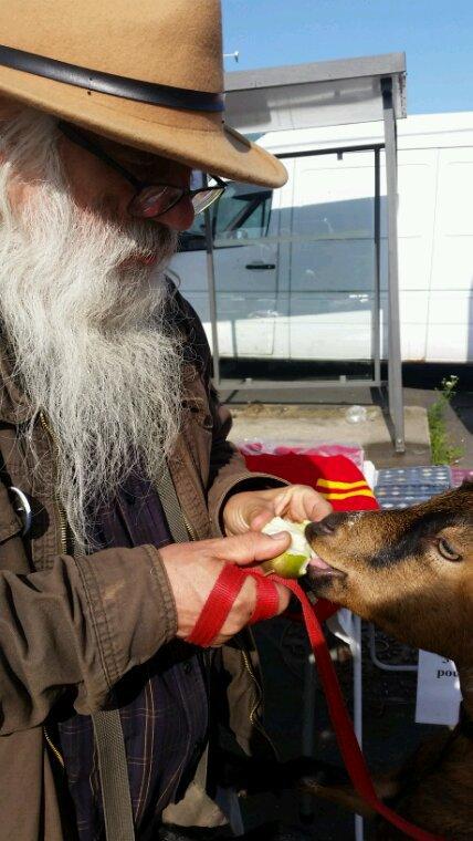 J'adore une pomme.