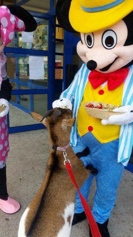 Elle a rencontré Mickey.