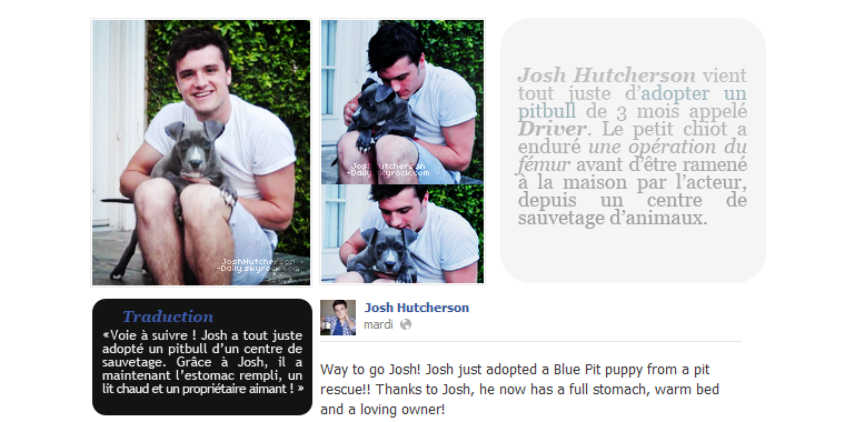 Josh adopte un chiot ! (17 avril 2012)