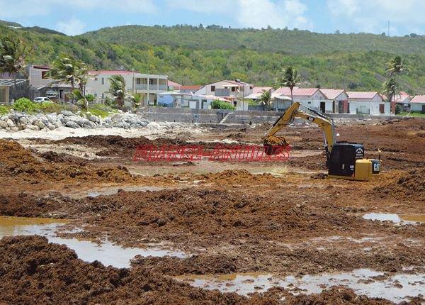"""Capesterre est une ville qui se meurt Claudia BELTON Vendredi 25 mai 2018 """"France Antilles"""""""